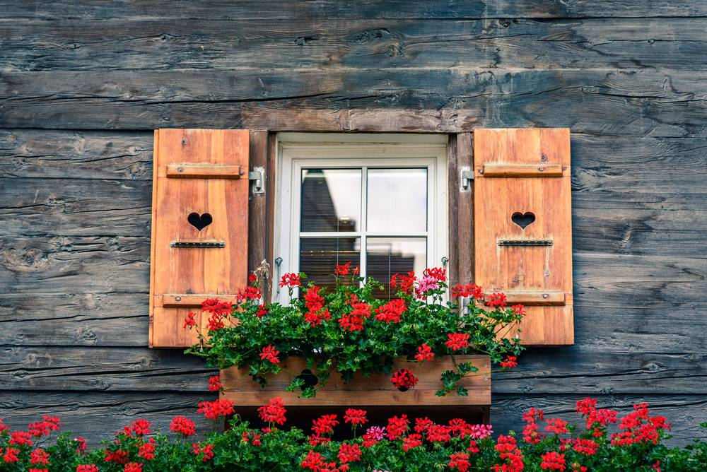 Pose de fen tre en bois dans une villa martigues pose de cloisons et faux plafond for Fenetre villa